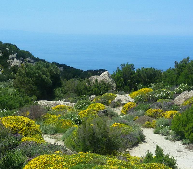 ElbaTrail: avventura sull'isola d'Elba