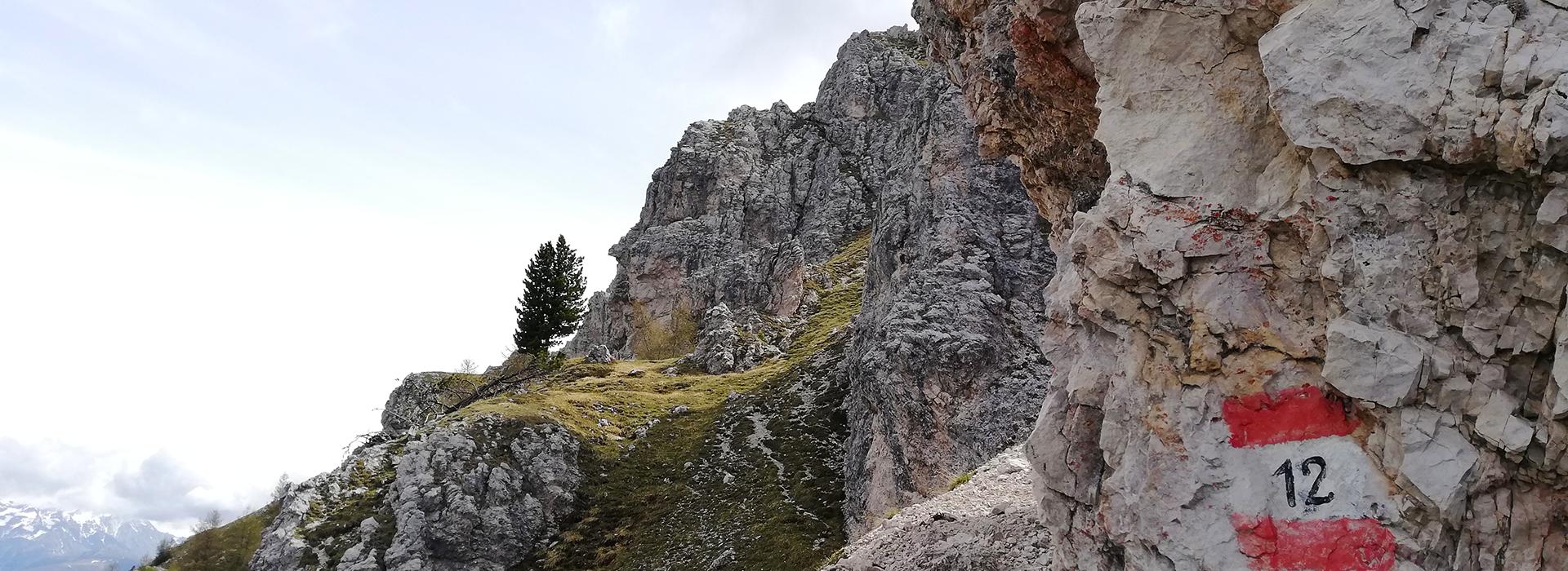 Piz da Peres, escursione ad anello nel Parco Naturale Fanes-Senes-Braies, dal passo Furcia